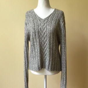 Ann Taylor Oatmeal V-Neck Alpaca Blend Sweater